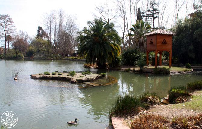 Olbius riquier office de tourisme d 39 hy res porquerolles for Jardin olbius riquier