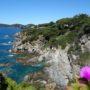 La presqu'île enchantée