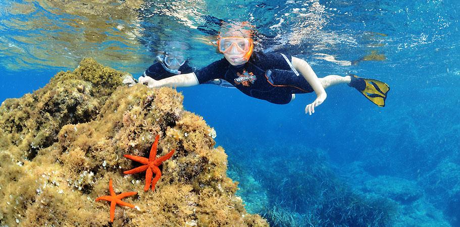 snorkeling a giens et porquerolles pour une sortie groupe