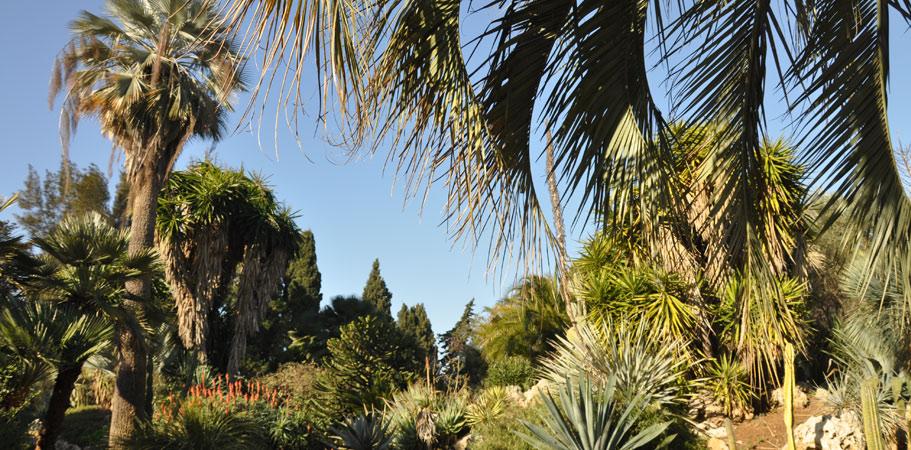 Le jardin Olbius Riquier, le castel Ste claire et le parc saint bernard a découvrir en groupe