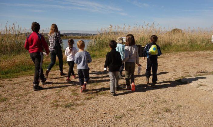 visite guidée au pays du sel salin des pesquiers enfants ludique
