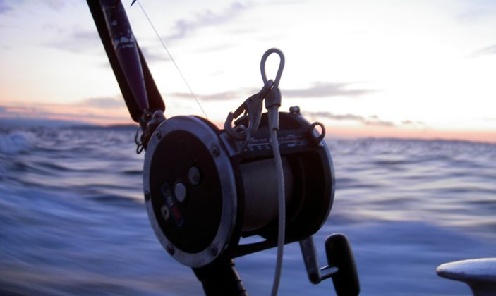 École de pêche sportive en mer
