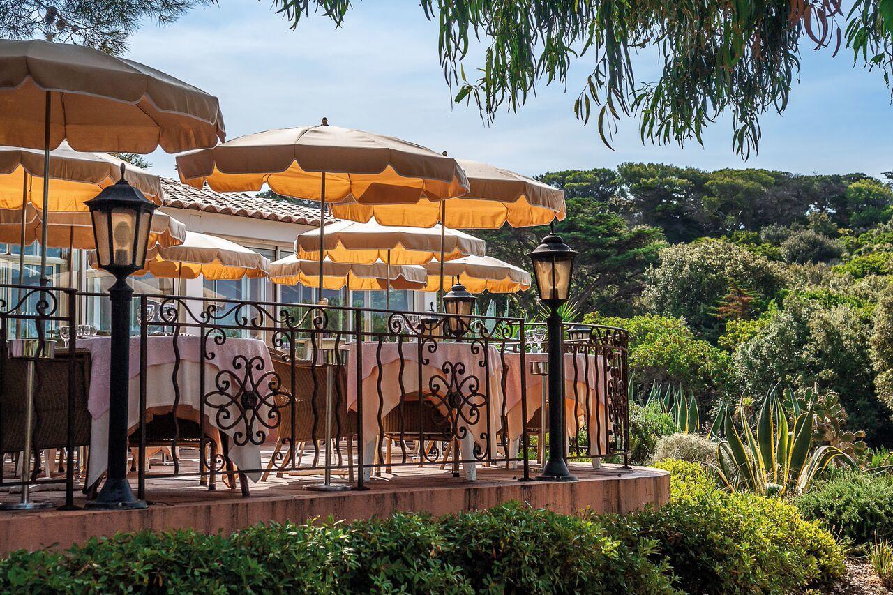 La Pinède Restaurant Porquerolles Ile Parc Terrasse