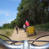 Bike Shop – L'île aux trésors
