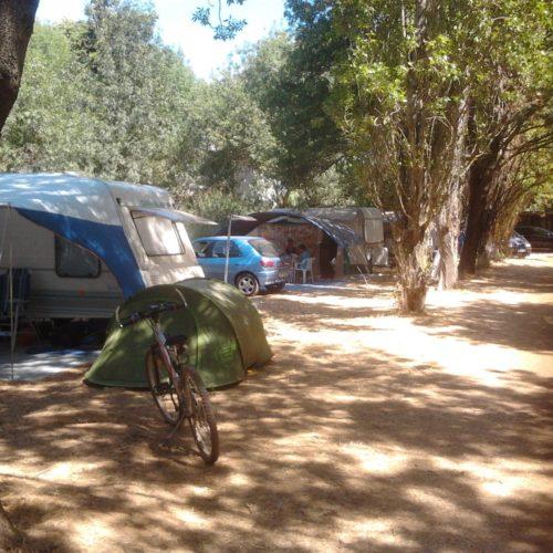 camping hyeres Condamine les salins