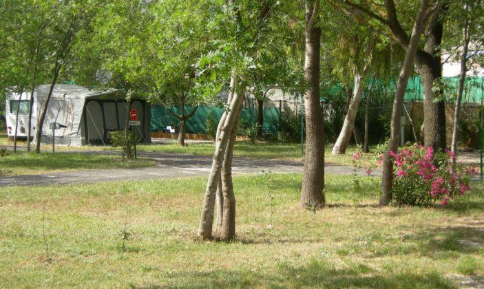 camping capricorne hyeres les salins