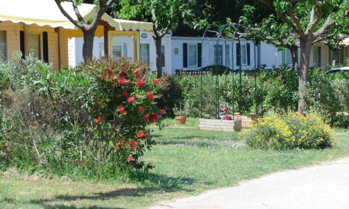 Camping Saint Pierre des Horts l'Almanarre hyères