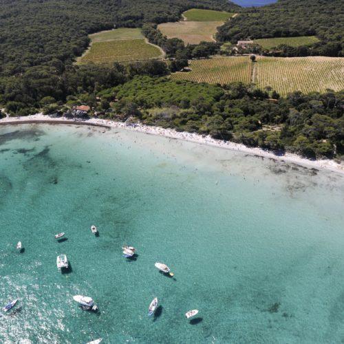 La plage d'argent – île de Porquerolles