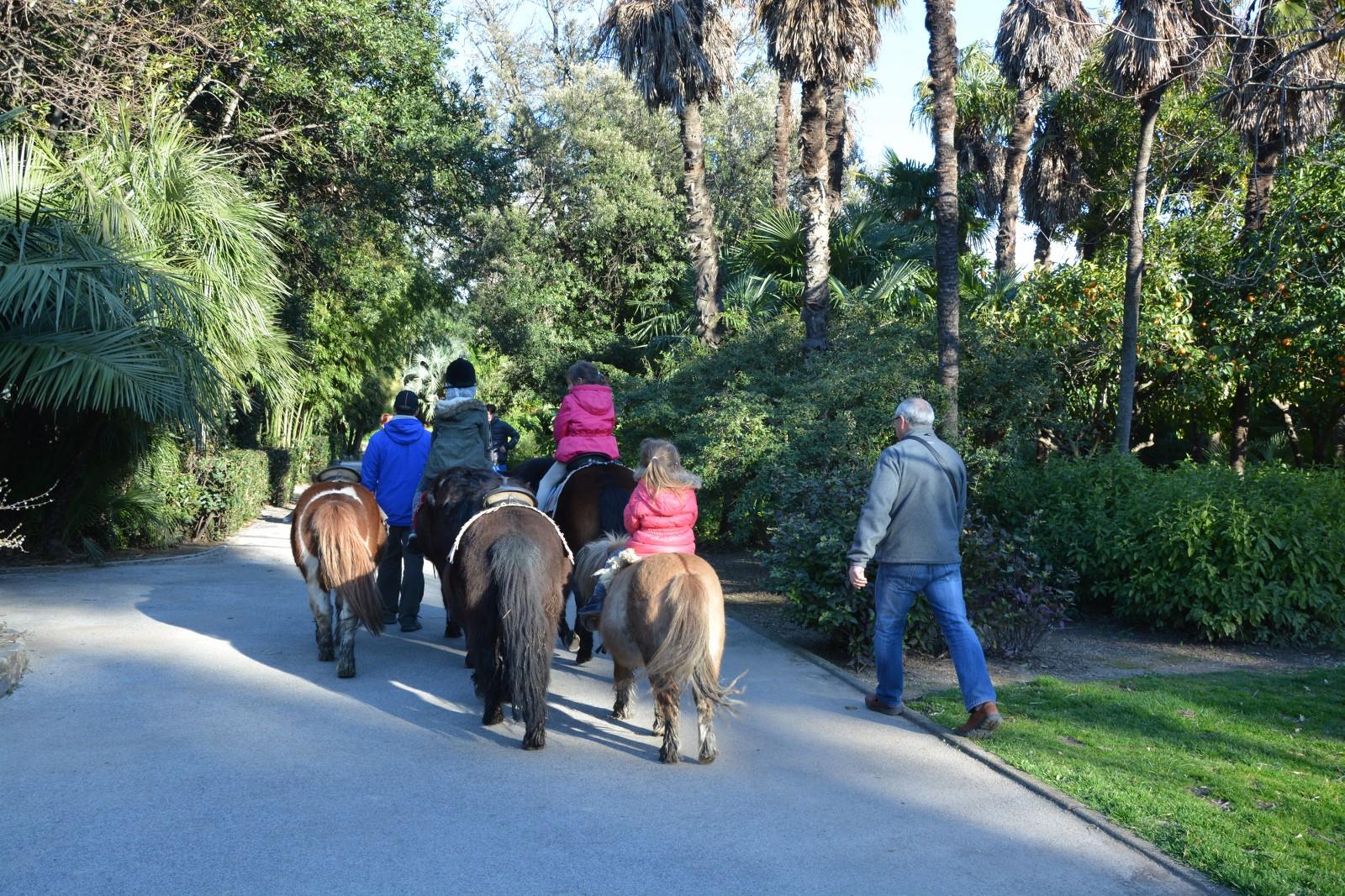 Parc Olbius Riquier A Hyeres Hyeres Tourisme