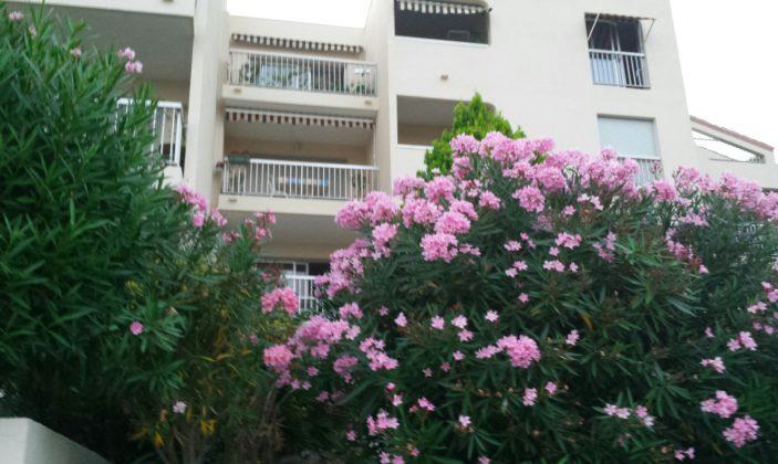 Appartement T2 – Mme Fleury
