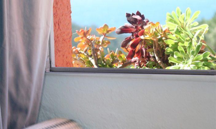 Les Iles d'Or du Levant, Piscine, Jardin, Terrasse, Location d'appartements, naturisme, Ile du Levant