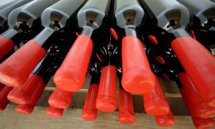 Domaine de la presqu'île de Giens Hyères vin vignoble