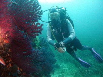 Espace Mer Plongée