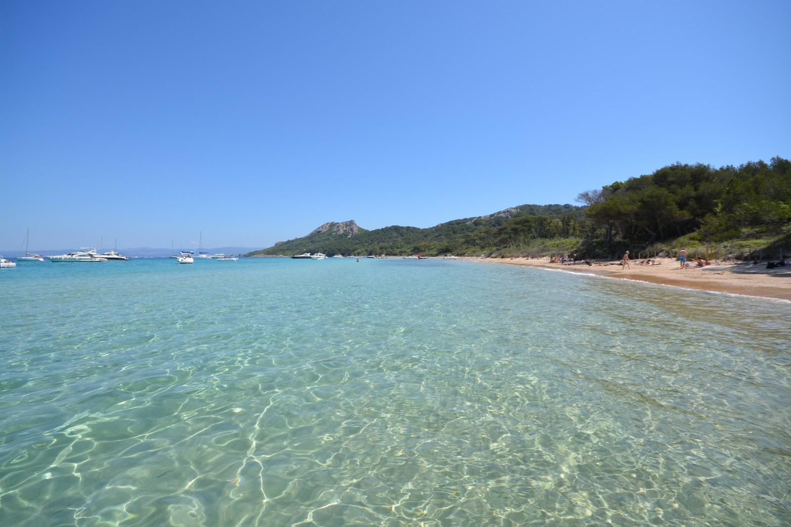 Les plages de porquerolles office de tourisme d 39 hy res - Office du tourisme ile de porquerolles ...