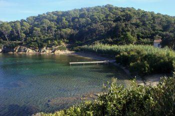 Traversée natation Port Man – Le Levant