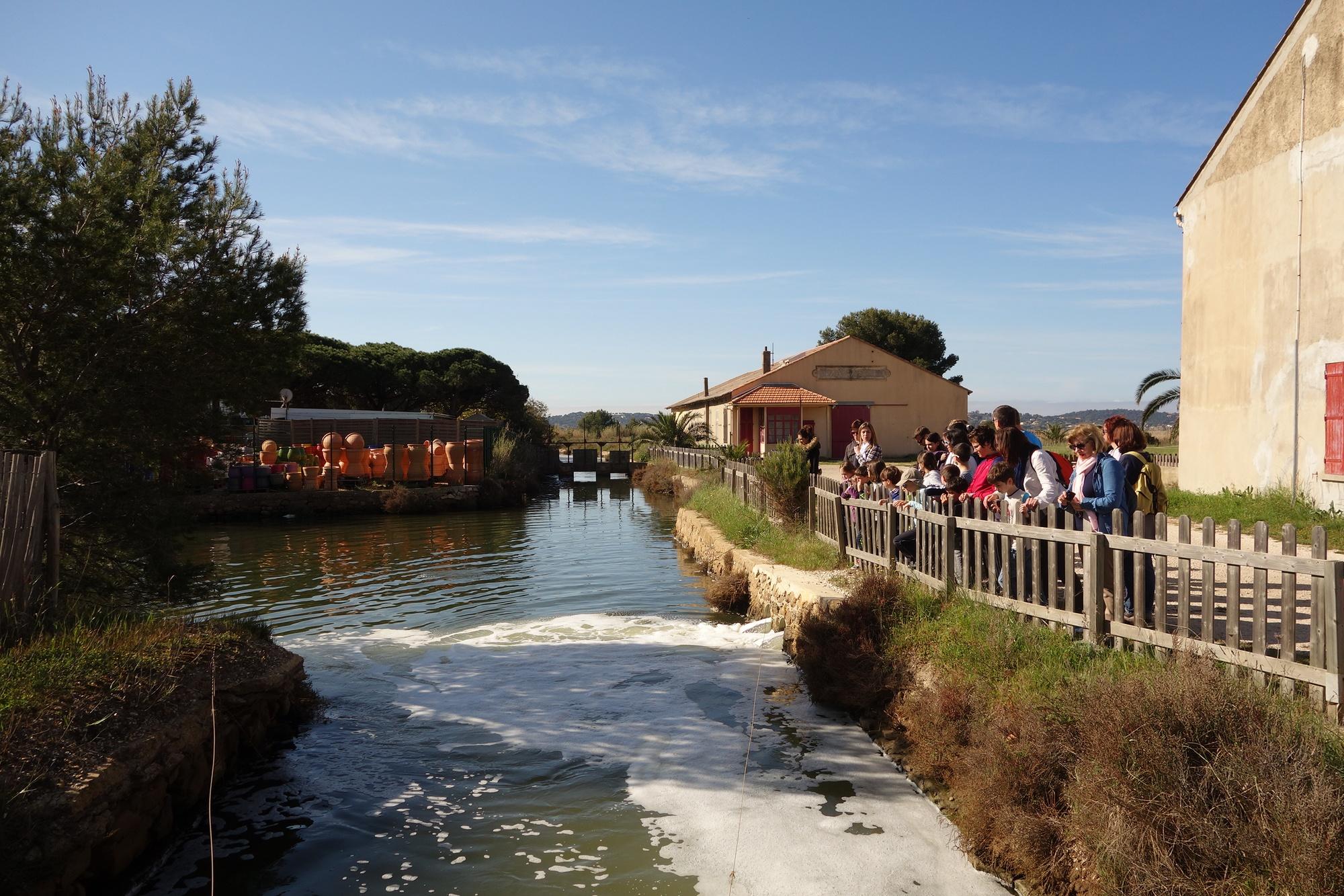 Visite guidée l'histoire du Sel (Hyères Office de Tourisme)