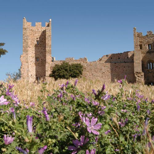 Enquête au château d'Hyères