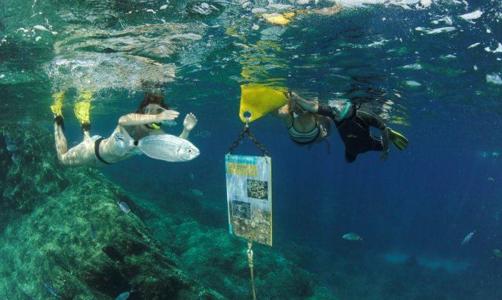 Sentier sous marin de la palud (Port-Cros)