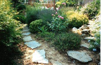 une allée du jardin en entrant sur la droite