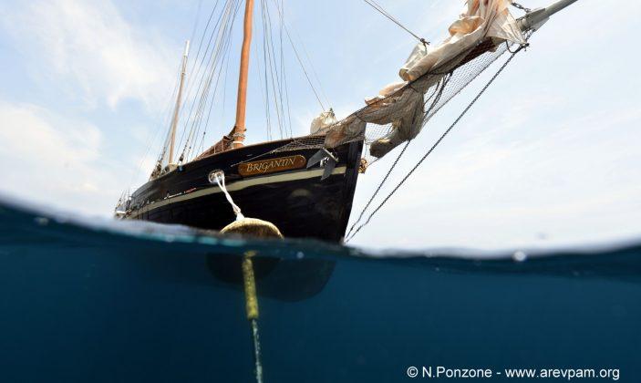 Le Le Brigantin- Espace Mer- Espace Mer