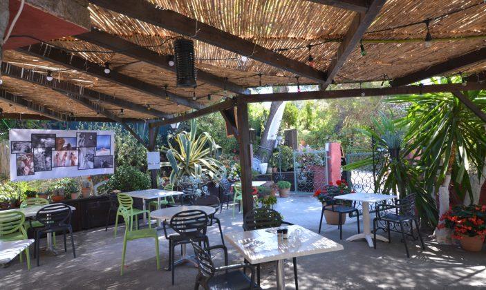 Restaurant La Fourmi île du Levant