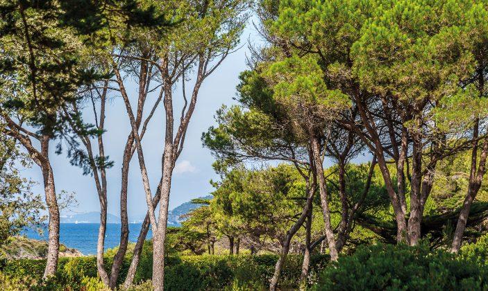 Mas du Langoustier, hôtel, île, plage, mer, piscine, parc