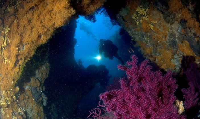 Gite de plongée du Gapeau