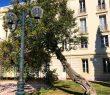 Park Hotel Hyeres