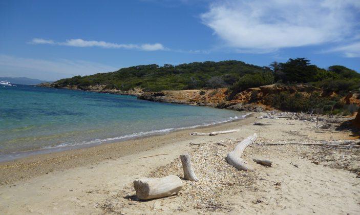 La plage du Langoustier à Porquerolles