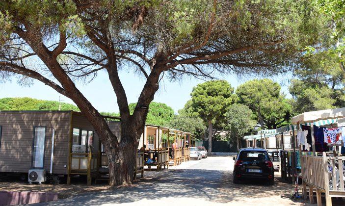 Camping le Méditerranée