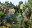 Bienvenue au gite au jardin, classé refuge LPO.