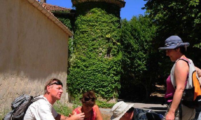 Sortie plantes comestibles et médicinales à Méounes-les-Montrieux