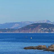 Faune, flore et géologie : le Cap Garonne dans tous ses états