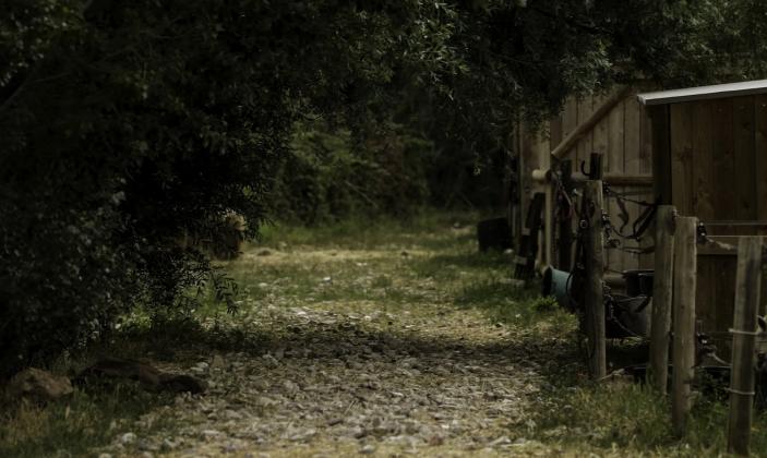 Haras d'Obtrée – La Crau