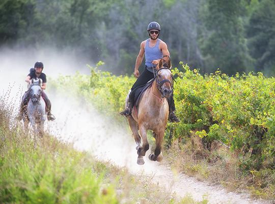 Poney Ranch de La Crau