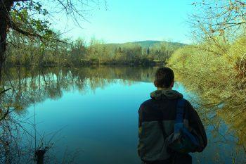 Lac du plan du pont Hyeres