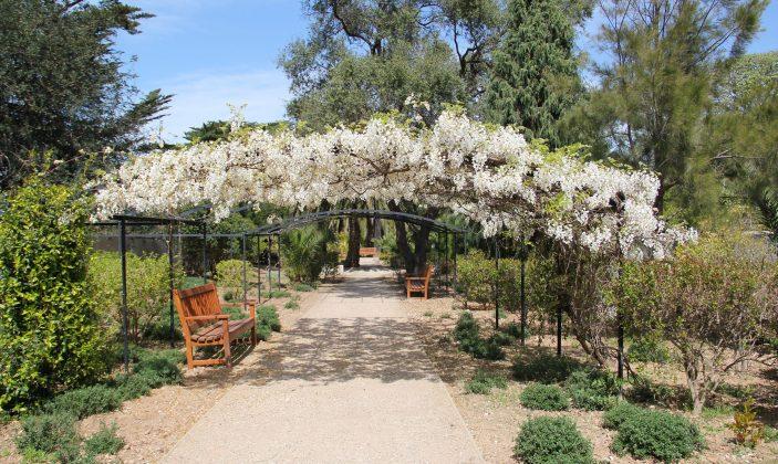 Jardin Emmanuel Lopez au mois d'avril