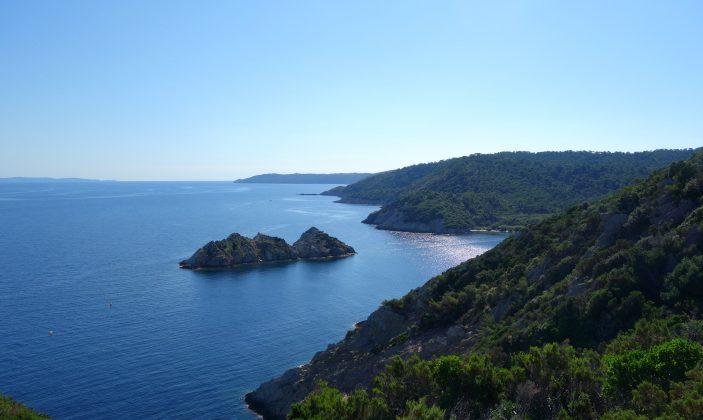 Balade nature accompagnée à Port Cros